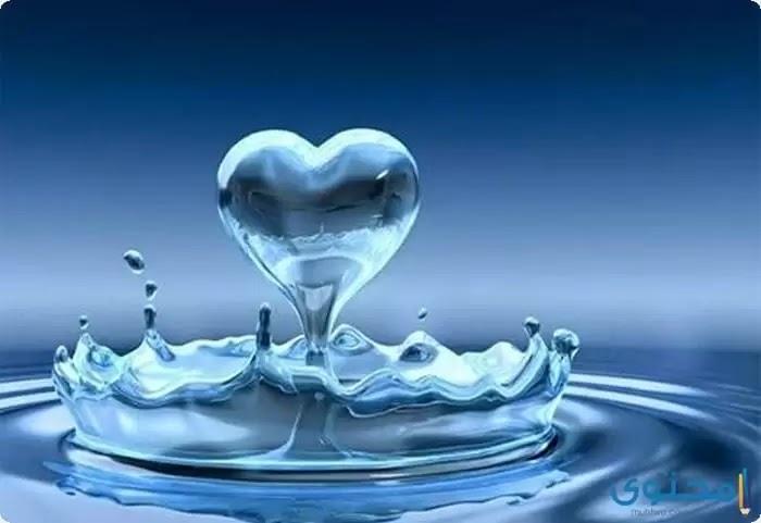 إليكم قصة رائعة تتحدث عن الماء
