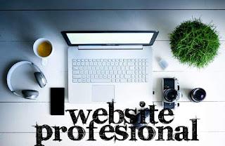 5 Hal Penting Untuk Membangun Website Profesional