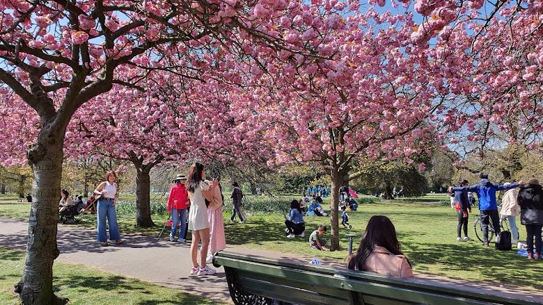 04-24 Greenwich Park