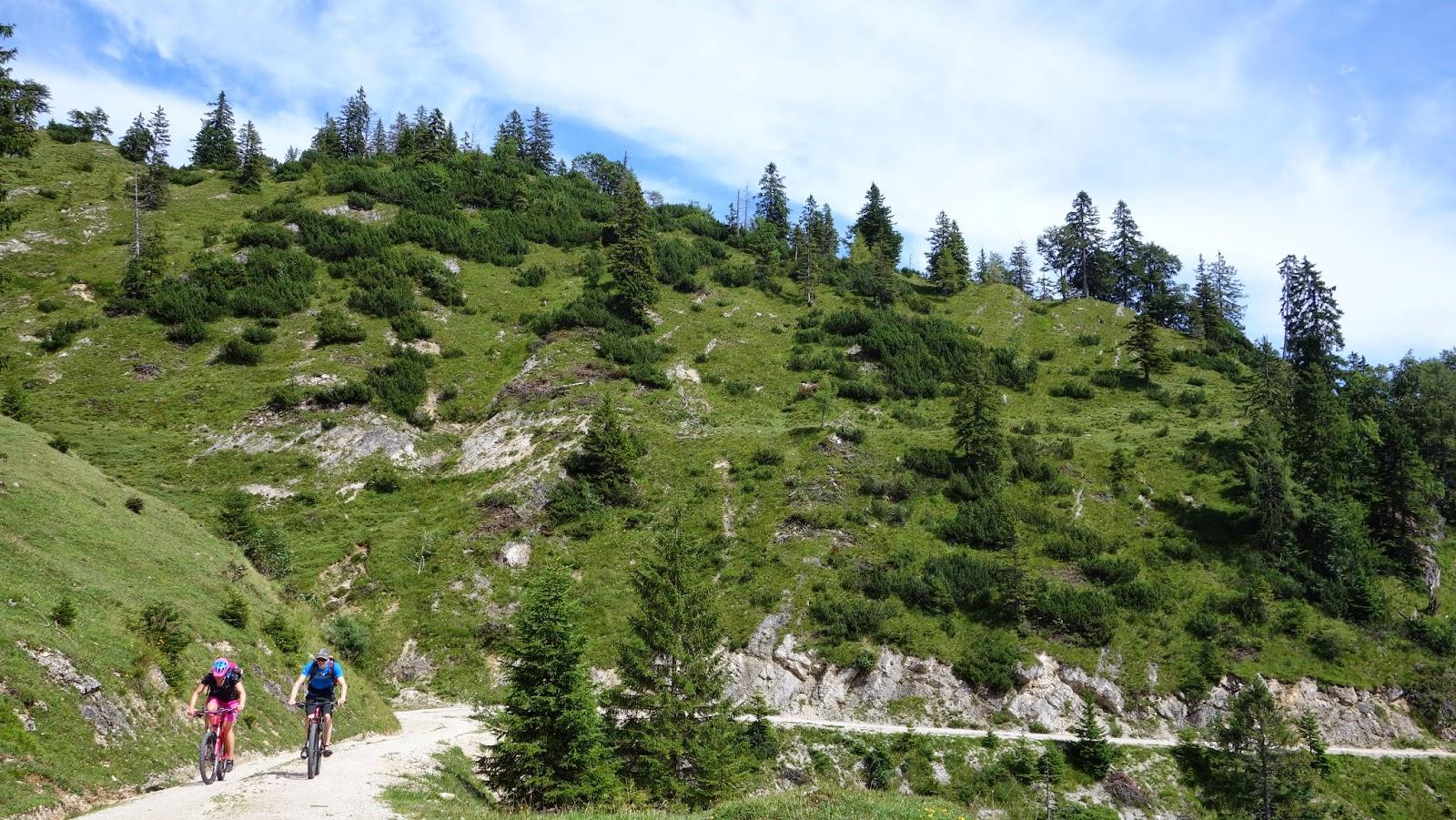 Thiersee Mountainbiken Mountainbike Tour: Veitsberg (Landl, Ursprungpass, Thiersee)