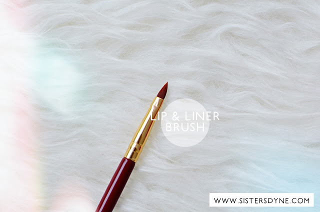 LIP AND LINER BRUSH