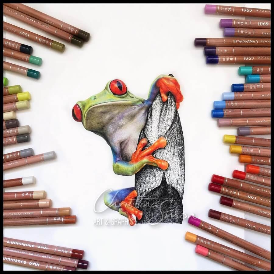 04-Curious-Green-Frog-Cristina-Simon-www-designstack-co