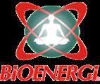 buku kecerdasan bioenergi
