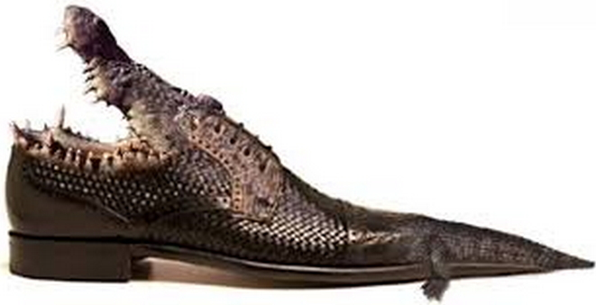 Insane Fashion Check Out These Alligator amp Crocodile