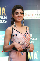 Actress Pranitha Subhash Pos in Short Dress at SIIMA Short Film Awards 2017 .COM 0063.JPG
