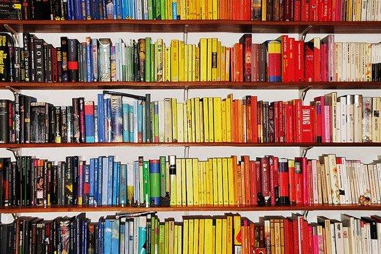 Bookshelves: unpopular bookish opinions