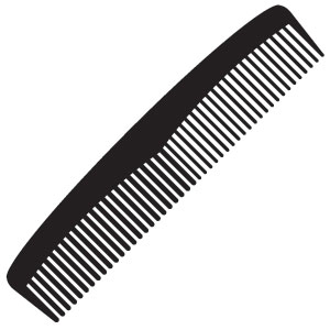 Art Matters: The Comb in the Museum