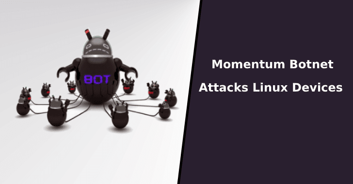 Momentum Botnet
