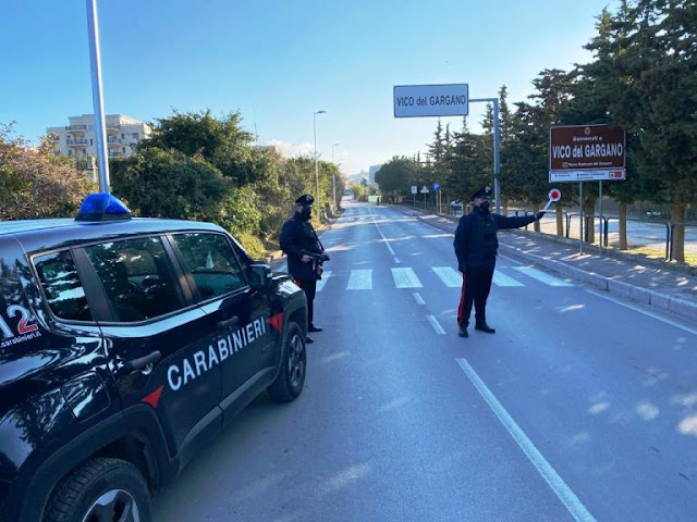 Vico del Gargano. Controlli a tappeto dei Carabinieri. Sanzioni varie e sequestri