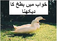 khwab mein batakh duck ka dekhna