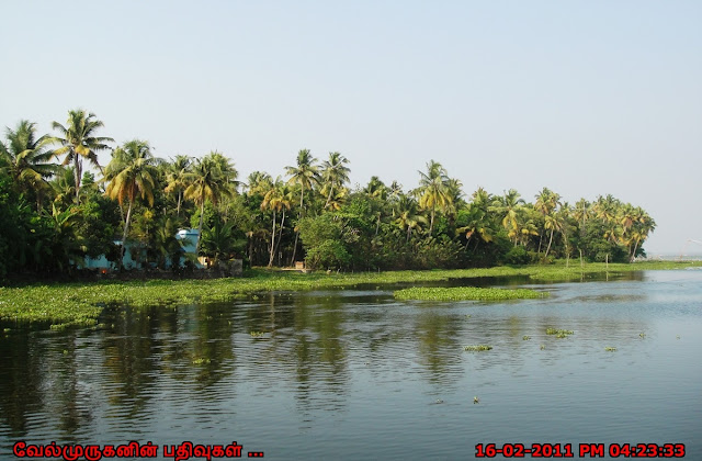 Alleppey Backwater Boat Ride
