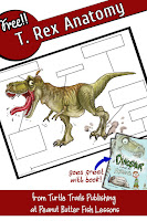 T. Rex Anatomy Dinosaur Activity