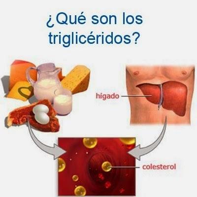 Bajar trigliceridos y colesterol de forma natural