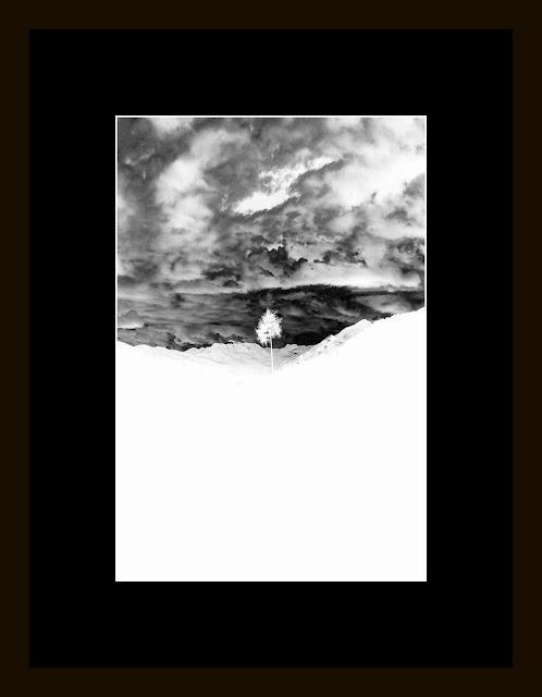 Dotknięcie pustki - przedmioty kolekcjonerskie. Praca eksponowana 20x30cm. Wystawa fotografii odklejonej w Galerii Pustej cd. fot. Łukasz Cyrus, 2019.