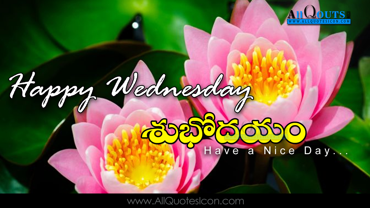 The Best Good Morning Wednesday Images In Telugu Hd Greetings Images