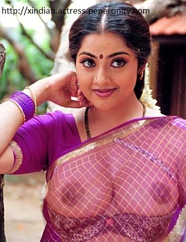 Meena Fake Nude 29