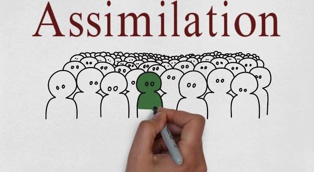 Emphasize social integration