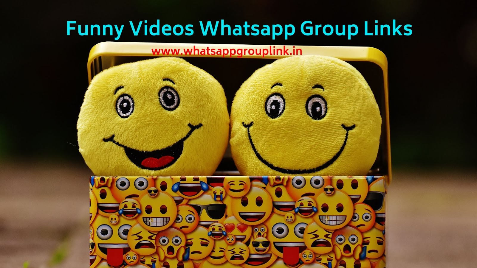 Whatsapp Group Link: Funny Videos Whatsapp Group Links