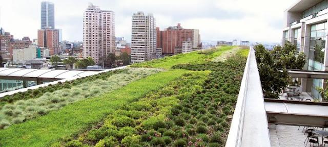 الأسطح الخضراء في الشرق الأوسط: ممكن وعملي؟