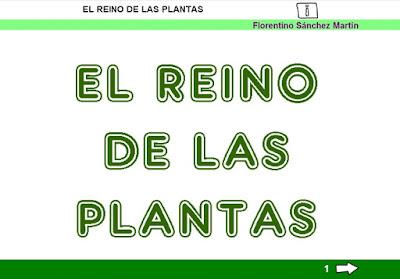 http://www.ceiploreto.es/sugerencias/cplosangeles.juntaextremadura.net/web/sexto_curso/naturales_6/reino_vegetal_6/reino_vegetal_6.html