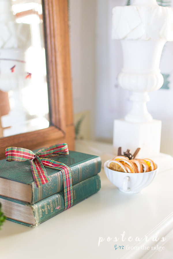 old green books tied up with plaid ribbon