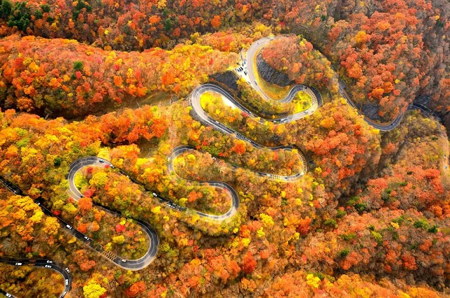 Take 48 adventurous bends to see the autumn fairy scenery of Japan