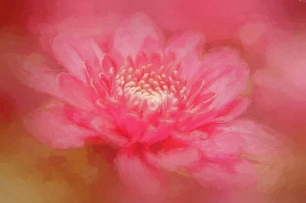 Outubro Rosa: Detecção precoce do câncer de mama