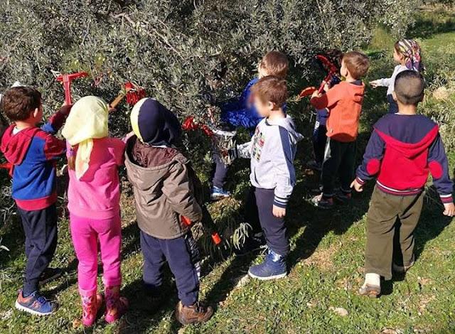 Μικροί μαθητές του 6ου Νηπιαγωγείου Ναυπλίου μυήθηκαν στο ταξίδι της ελιάς