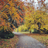 Images of Ireland: Hiking path with autumn foliage at Kilkenny Castle