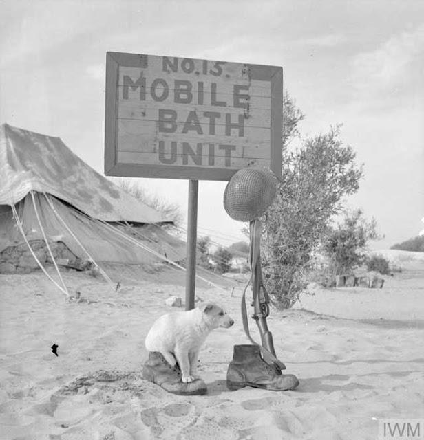 North Africa, 4 March 1942, worldwartwo.filminspector.com