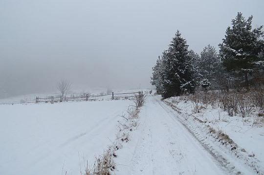 Dolne partie Śnieżnicy.