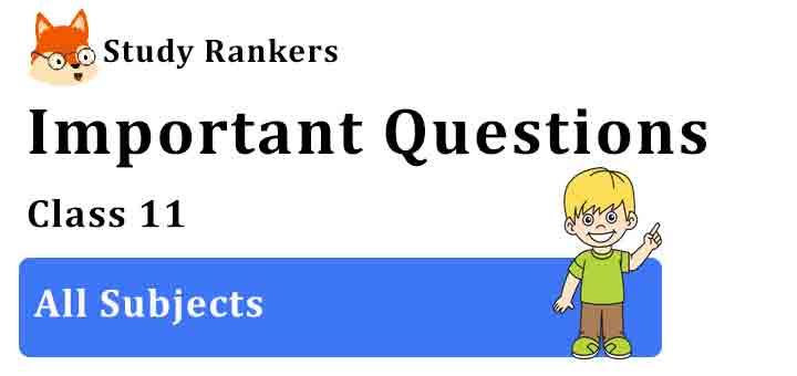 Important Questions for Class 11