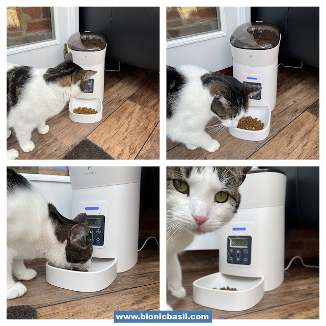 What's In The Box ©BionicBasil® Petlibro Easy Feed Automatic Pet Feeder with Melvyn