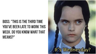 Funny Wednesday Memes to Make Your Hump Day a Little Better