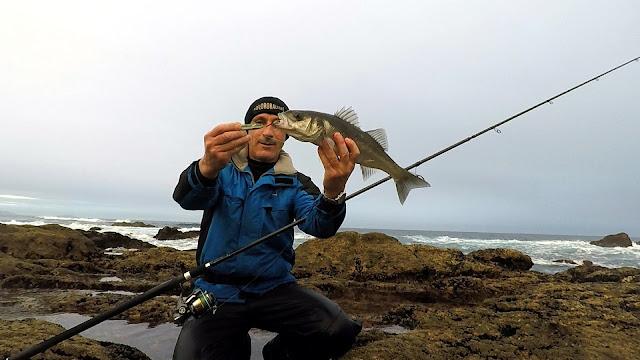 """ROBALIZA%2BJIG - Costa da Morte """"la pesca de la lubina en Galicia"""""""