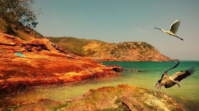 Las bellas y magnificas playas de Brasil | Un Paseo con Ari