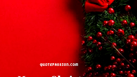 {{Best}} Merry Christmas Greetings Message