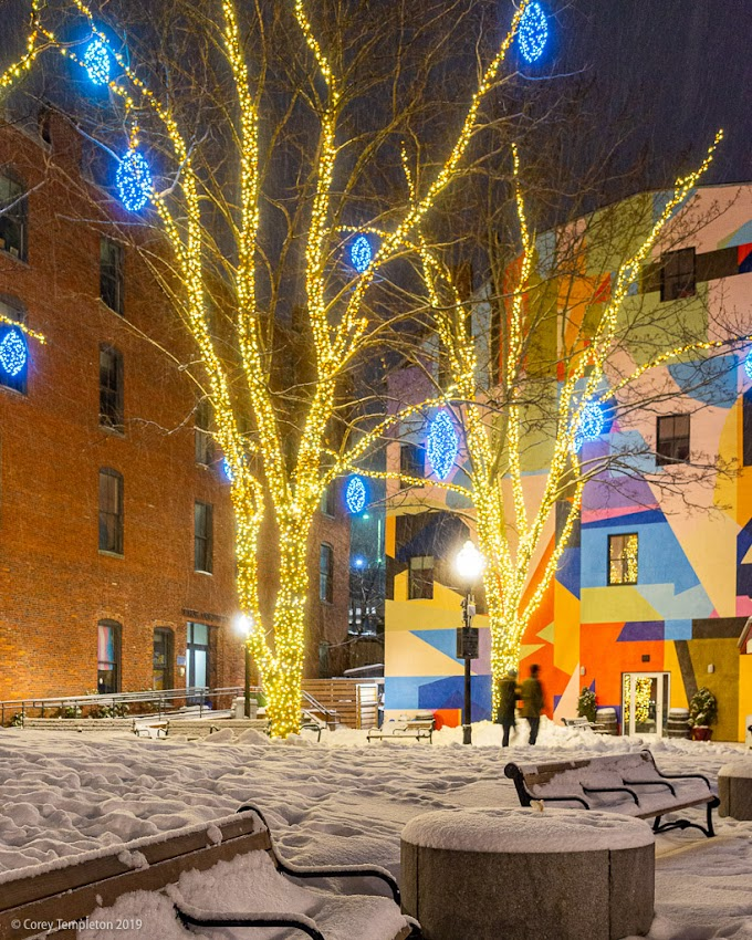 Portland, Maine USA Photo by Corey Templeton. A pleasant stroll past the lights in Tommy's Park last night.