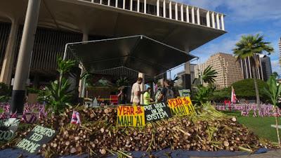 PC: Ka Leo University of Hawaii Manao Facebook page