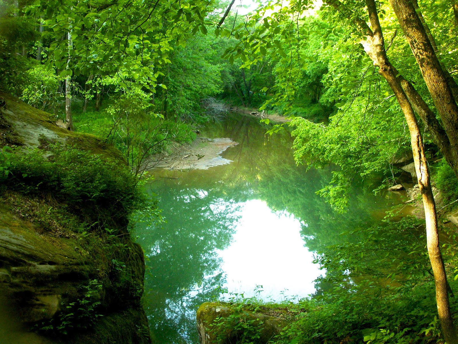 red river gorge   Reflections by Mike Loveridge   Bear Red River Gorge