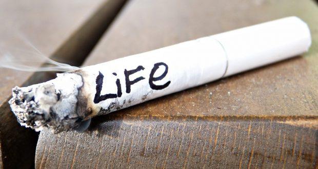 Tips Bagi Para Perokok Agar Paru-Paru Tetap Bersih dan Sehat