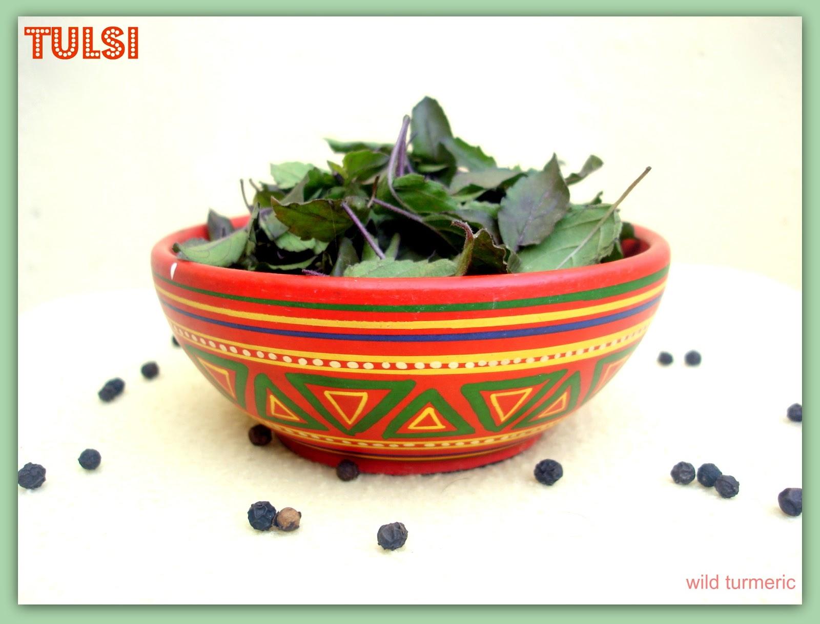 Krishna Tulsi | Thulasi | Tulasi Plant Medicinal Uses: Krishna Tulsi Cough Syrup