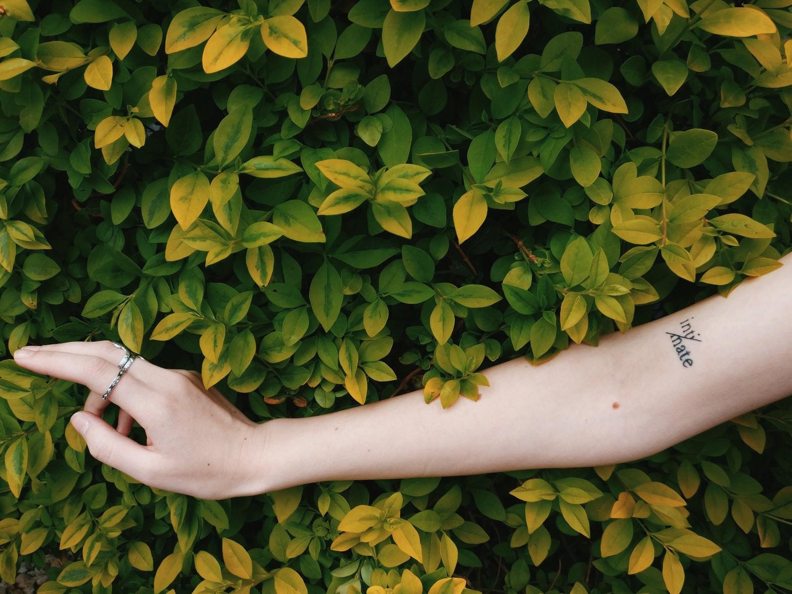 como cuidar da pele no outono blogeira de beleza