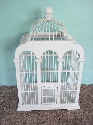 Bird,bird cage,bird bath,bird feeders,bird house