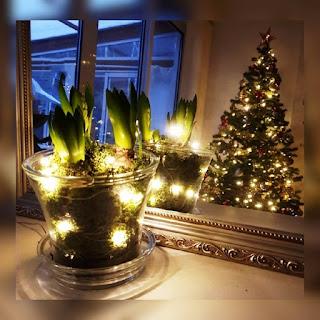 mittljuvahem, mittljuvaheminsta, mitt ljuva hem, livsstilsblogg, vardagsblogg, influencer livsstil, influencer göteborg, influencer västra götalands län, julpyssel, diy jul, diy julgrupp, diy blogg, gör en julgrupp, julblommor,
