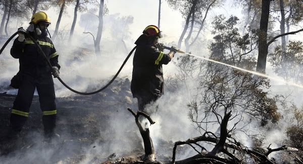 Δασοπροστασία: «Καίνε» την πυροσβεστική οι ελλείψεις φωτιά στο Σώμα