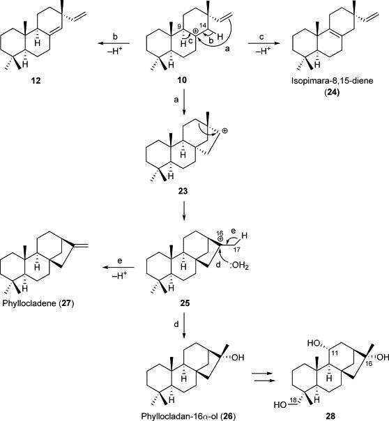 Phomopsis Toxins