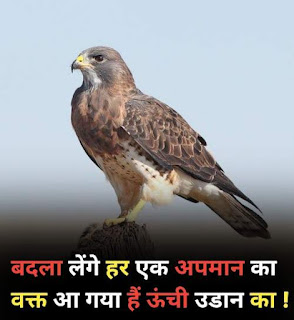 20 motivational quotes hindi for students