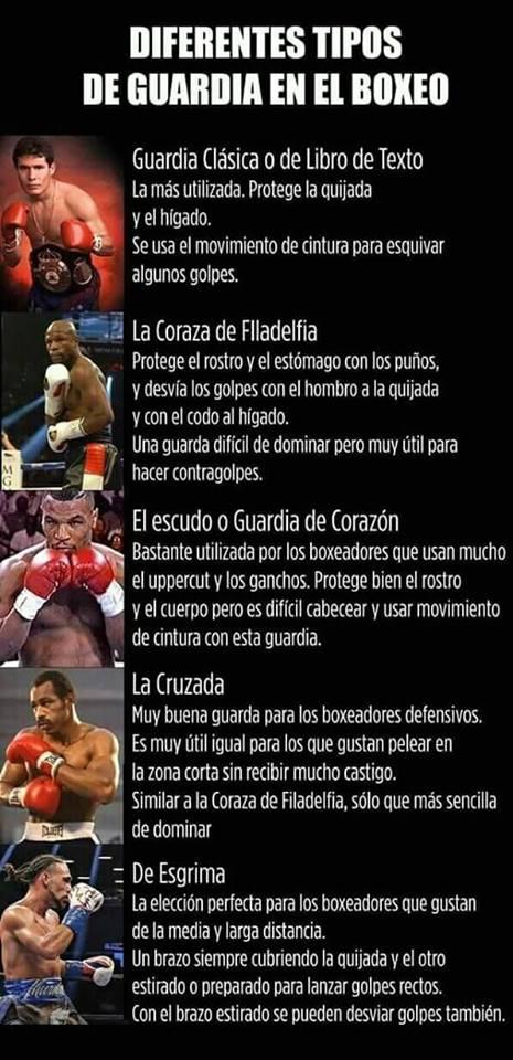 Funda Mordex Tipos De Guardias En El Boxeo
