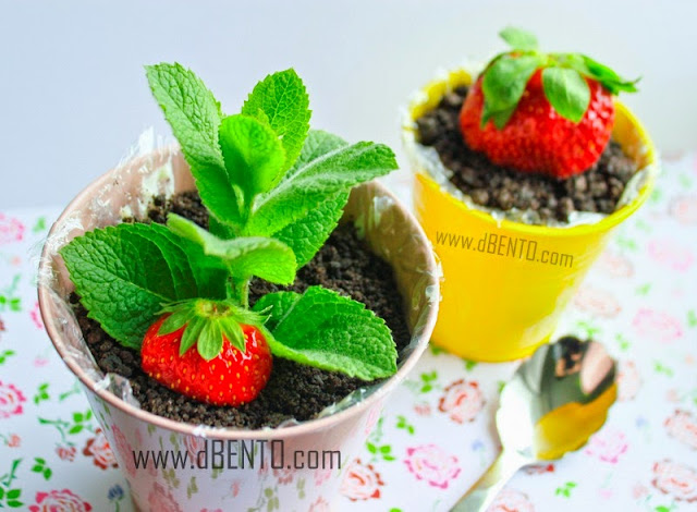 how to make cheese cake with strawberry plant in pot